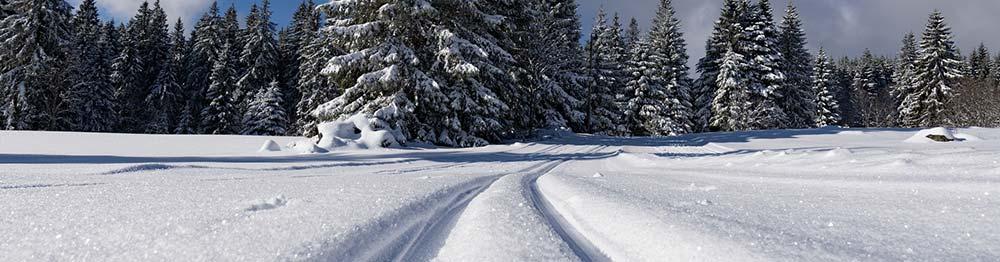 Aktivurlaub im Winter