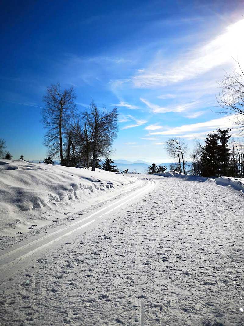 Aktivurlaub - Winter im Schwarzwald