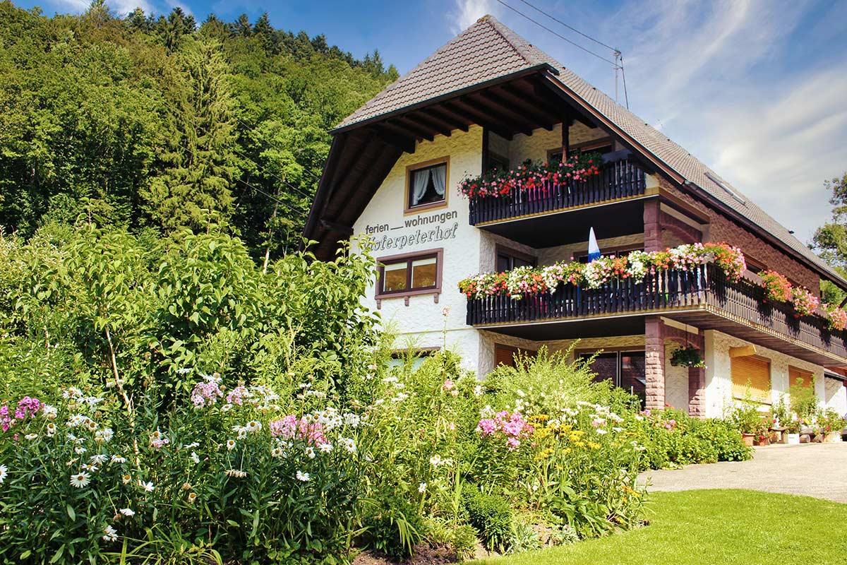 Leibgedinghaus Ferienwohnungen im Sommer